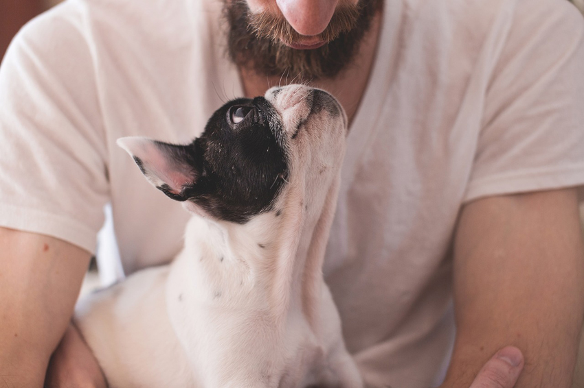 Owner with dog